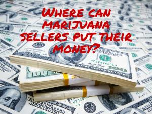 marijuana money (1)