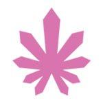 square_bloomweedmaps
