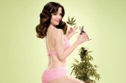 Cannabis-Infused Sex Products