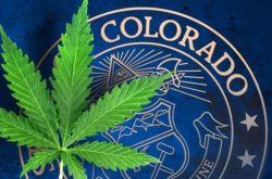 How Denver is Setting the Tone for the Pot Industry
