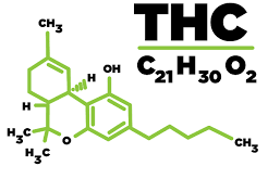 4 Benefits of THC