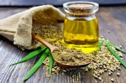 Ready to Start Using CBD Oil? – Here's Your Options