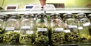 marijuana coupons denver co