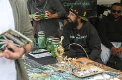 2015 Denver Cannabis Cup Review