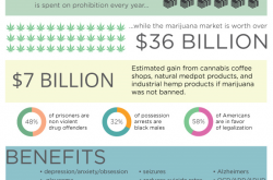 Why Is There So Much Marijuana Misinformation?