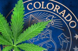 Colorado Cannabis Group Takes Root at Industry Network
